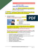 RA Nº01-12 (B) DESCRIPCIÓN Y ANÁLISIS DE CARGOS
