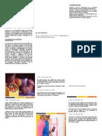 AUDITORIA AMBIENTAL EMPRESA PLÁSTICOS Y TECNOLOGÍA SAS (P&T SAS)