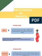 GESTION DEL RIESGO DEL PROYECTO