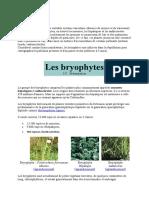 BRYOPHYTES-1