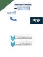 Estructura Ecológica de la Comunidad Urbana