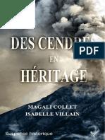 « Des Cendres en héritage », de Magali Collet & Isabelle Villain