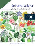 Arboles de Puerto Vallarta