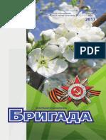 БРИГАДА_апрель-май_2017