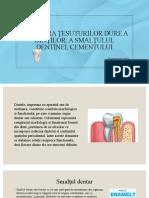 Structura Tesuturilor Dure Dentare