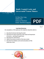 Skull, Cranial cavity, Venous sinuses