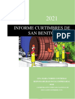 INFORME CURTIMBRES