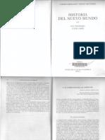 Historia Del Nuevo Mundo T II - X - Bernand Gruzinki