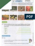 1ª ciencias naturales adaptaciones de los seres vivos 14 abril 2021 guia 005