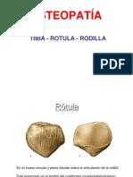 02-RODILLA