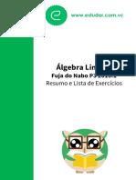 8827-Álgebra Linear I Resumo e Lista de Exercícios Fuja Do Nabo P3 2018.1.Original