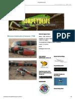 Herpetolife - lista de espécies