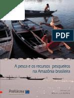 A pesca e Recursos pesqueiros da Amazônia_Ruffino_2004