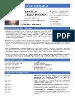 Curriculum Vitae Simple_2021_LCVP (Actualizado)