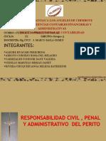 Responsabilidad-Civil-y-Penal-Del-Perito-2014