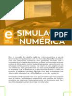 Catálogo Simulação Numérica Less Energy
