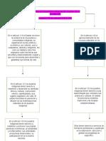 Mapa Conceptual Pueblos Indigenas Din