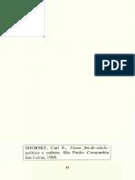 A Ringstrasse, Seus Críticos e o Nascimento Do Modernismo Urbano. Viena Fin-De-siècle. Política e Cultura. SHORSKE, Carl E. (1)