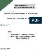 ENFOQUES TEORICOS DE LOS PROBLEMAS DE APRENDIZAJE