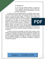 RAPPORT D'ETUDE DE ANGE AKOUELE PROCESS