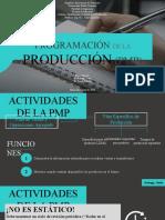 5. PROGRAMACIÓN DE LA PRODUCCIÓN (PMP)