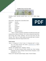 Klasifikasi Hama Ulat Daun Kubis