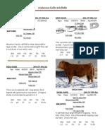 2011 Bull Sale Catalog