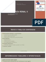 vasculopatias RENAL II