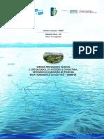 Relatório-Final-RF-Vol-II-Prognóstico