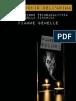 Libro Fiamme Gemelle di Pamela Soluri