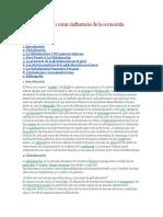 La globalización como influencia de la economía Peruana