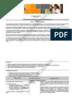 Programa preliminar Diseño Gráfico 3º  Sec. Técnicas