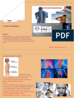 Coşcodan Neurologie studiu individual 1
