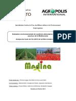 Rapport PI ACV Medina Version Finale Avril2014