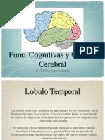 funciones cognitivas