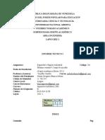 INFORME TÉCNICO I UNA 2021-1 (201)