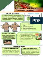 INFORGRAMA SANEAMIENTO BASICO 1