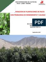 RECUPERACION DE PLANTACIONES DE PALTO CON PROBLEMAS DE RENDIMIENTO Y CALIDAD