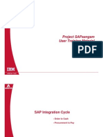 SAP Intregation Cycle