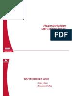 SAP Intregation Cycle