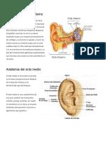 Anatomía del oído externo