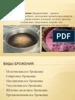 презентация микробиологияоляпалади