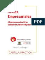 cartilla redes empresariales (1)