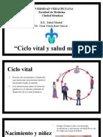 4.1 Y 4.2 Salud Mental