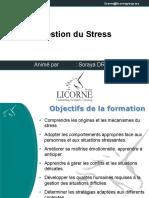 Gestion de Stress Licorne VP1
