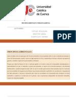 PRINCIPIOS AMBIENTALES (1)