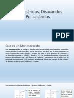 Monosácaridos, Disacáridos, Polisacáridos
