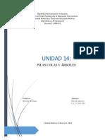 Alacayo Gerard Unidad 14   PILAS Y COLAS