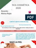 CLASE_II_ANATOMIA_DE_LA_PIEL