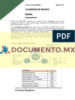 documento.mx-accidentes-de-transito-